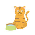 ある日突然猫のいる生活 – 7 –