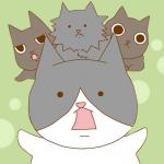 猫と暮らすために一人暮らしを始めた独身干物女と猫の絵日記