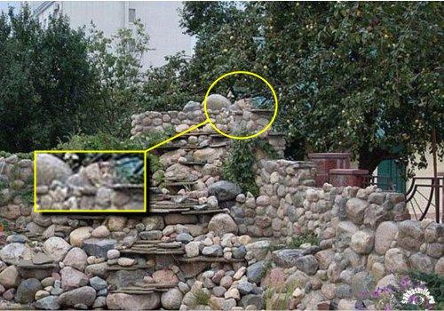 cat-rocks-2